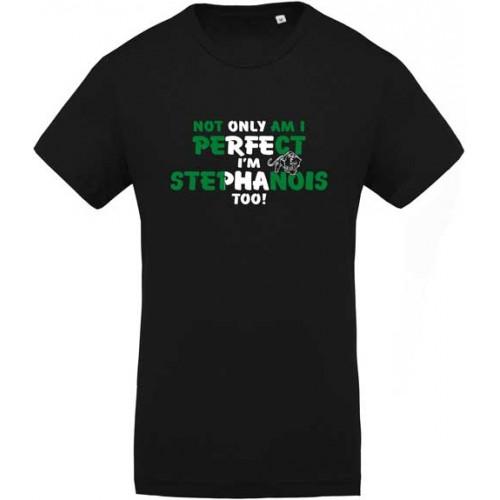 Tee shirt Stéphanois Perfect